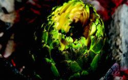 Charred Artichoke image_1024x640